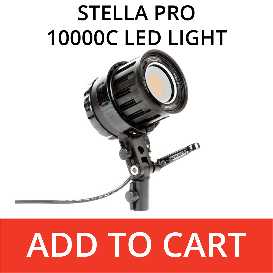Stella Pro 10000c LED Light