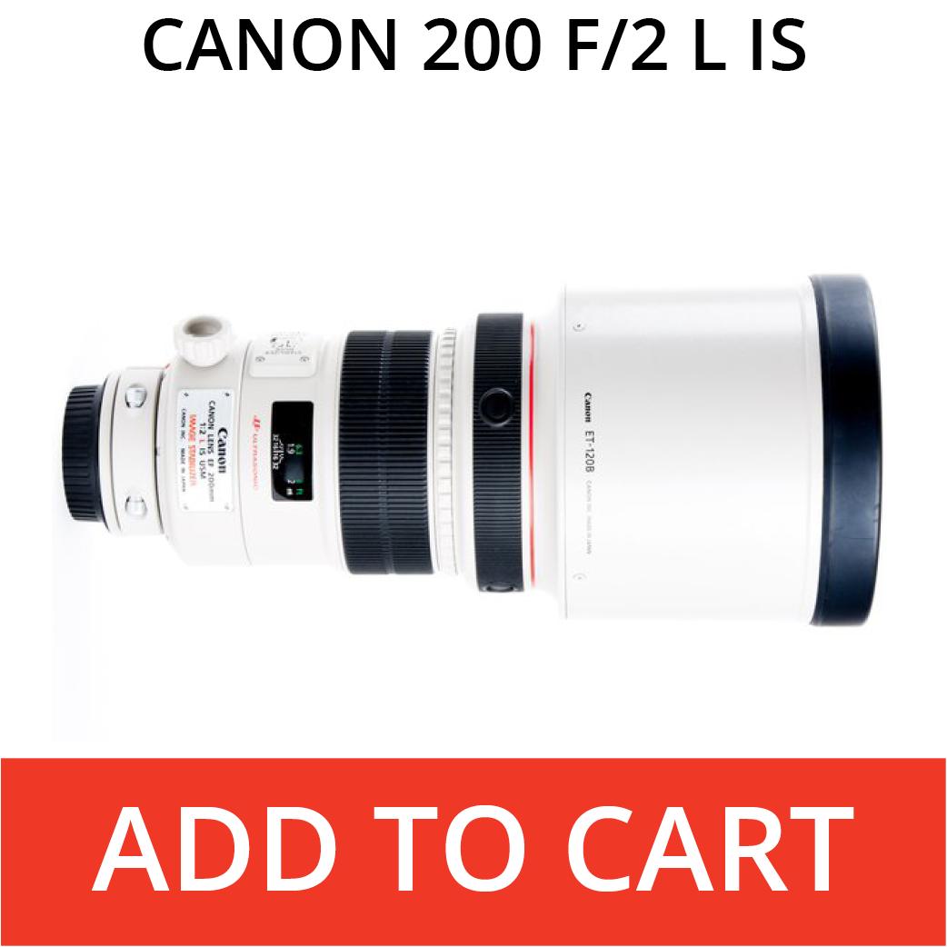 Canon 200 f/2 L IS
