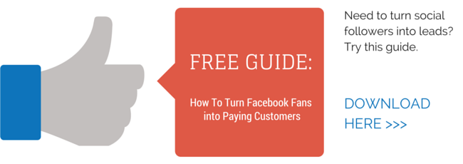 Download our free guide: How to Turn Facebook Fans Into Paying Customers