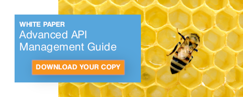 Download your copy of Yenlo's Advanced API Management Guide