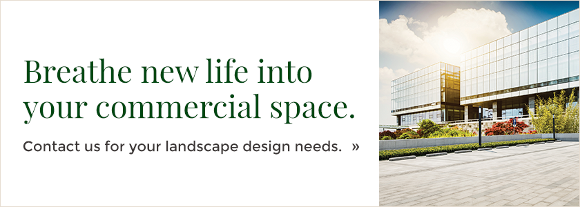 Commercial-landscape-design-blog