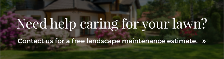 Landscape-Maintenance-Request