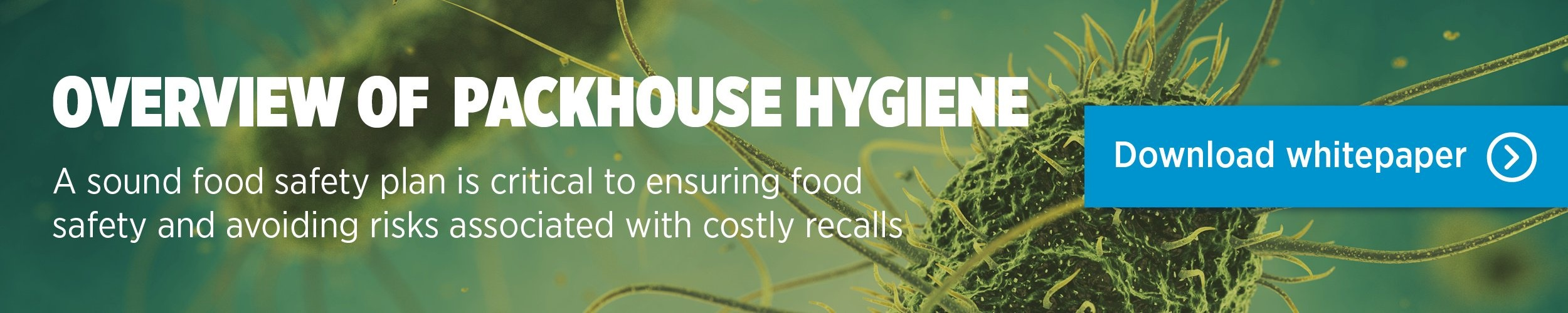 Download our Maintaining packhouse hygiene whitepaper