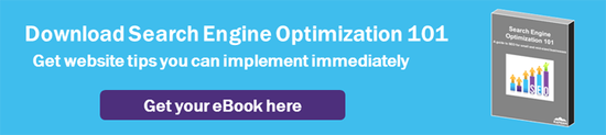 Download Search Engine Optimization 101