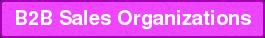B2B Sales Organizations