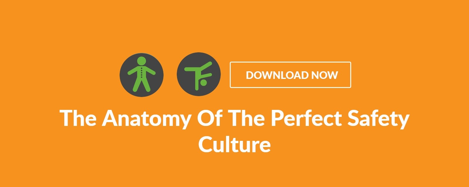 the anatomy of the perfect safety culture