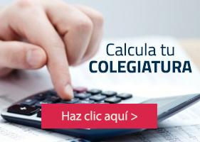 UP - Calcula tu colegiatura - Administración y Finanzas