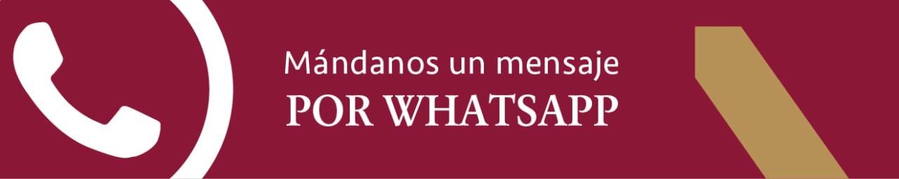 WhatsApp Gobierno y Economía de la Universidad Panamericana