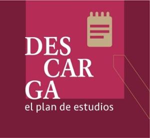 Descarga el plan de estudios Licenciatura en musica e innovacion de la escuela de bellas artes de la UP)