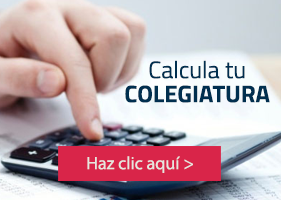 UP - Calcula tu colegiatura - Negocios internacionales