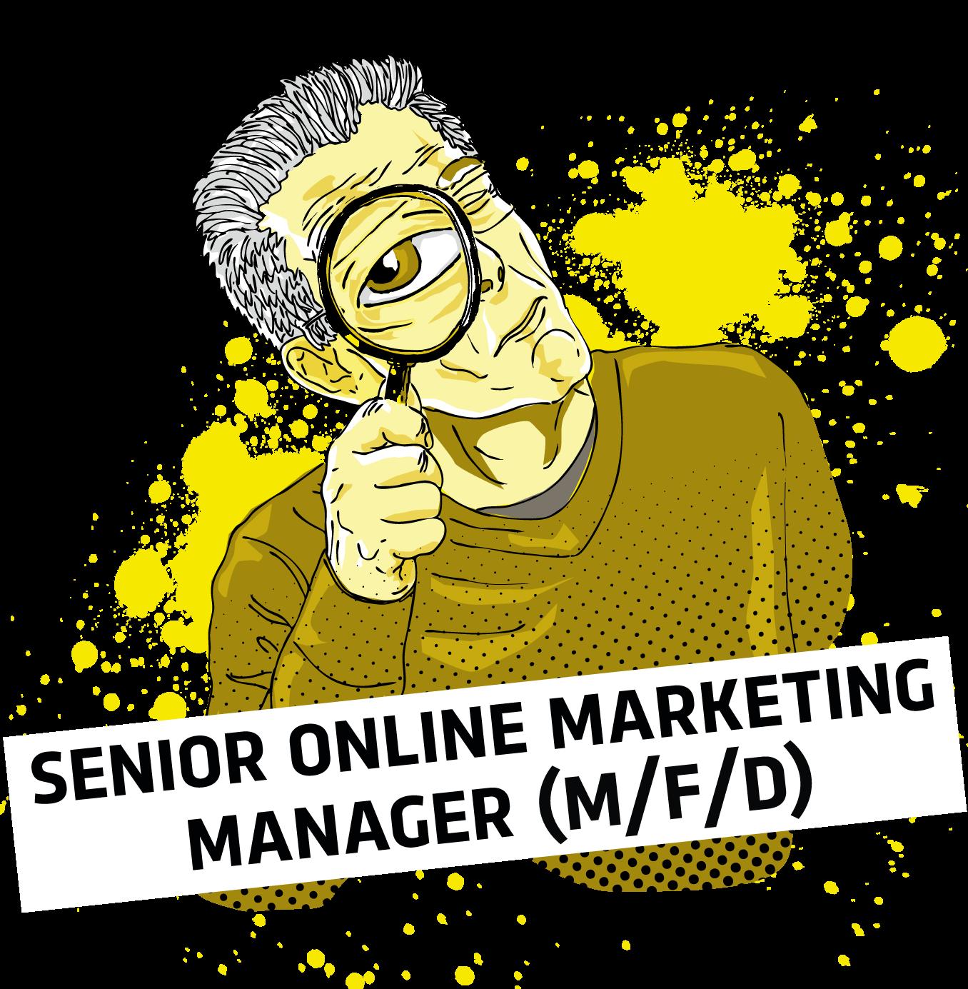 Senior Online Marketing Manager