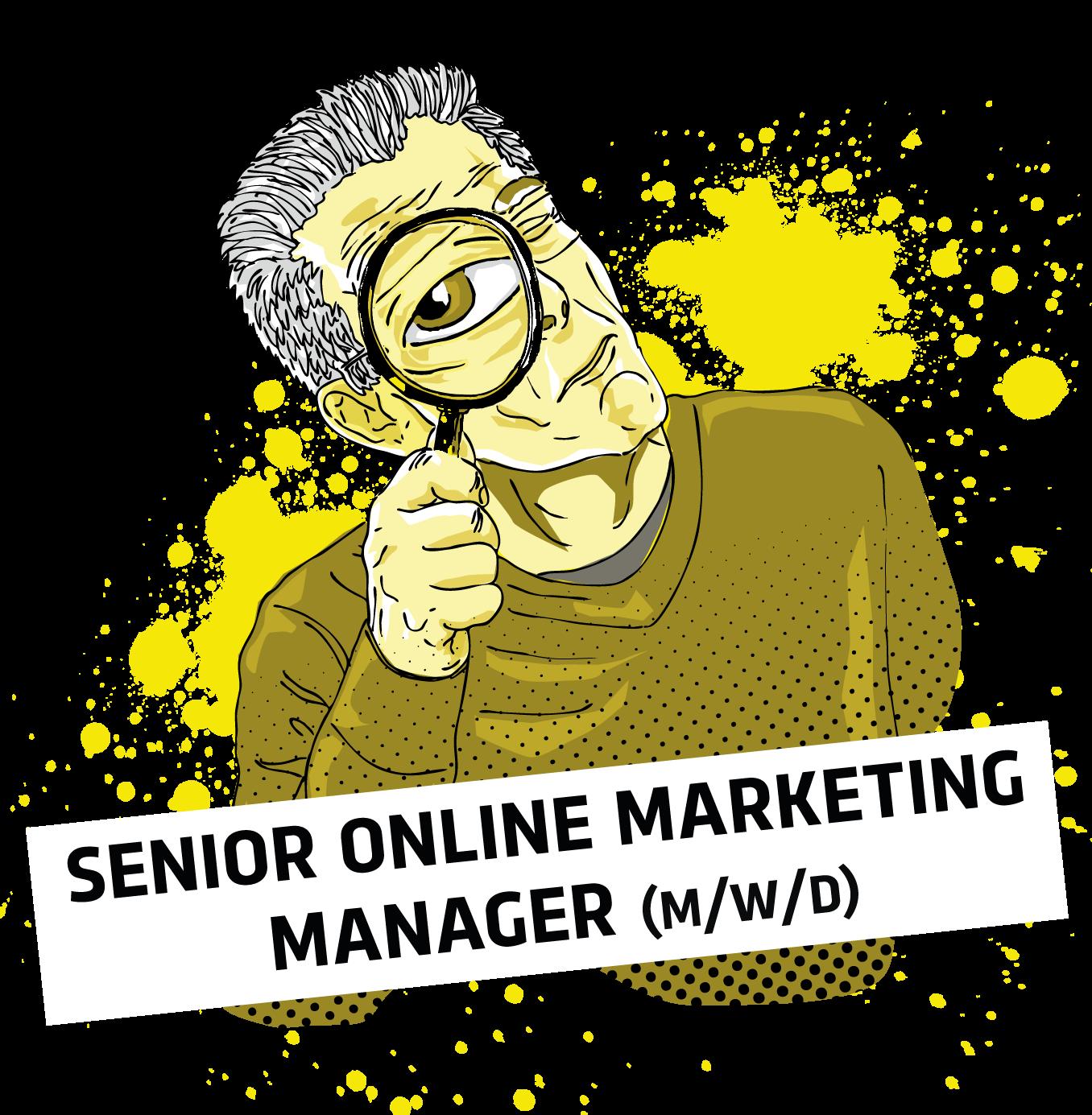 Senior Online Marketing Manager Göttingen