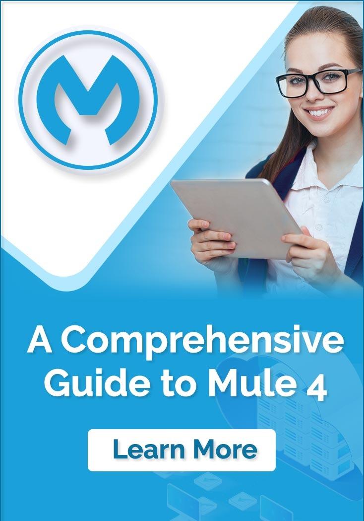 A Comprehensive Guide to MuleSoft Mule 4
