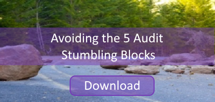 Download the Guide Avoiding the 5 Audit Stumbling Blocks