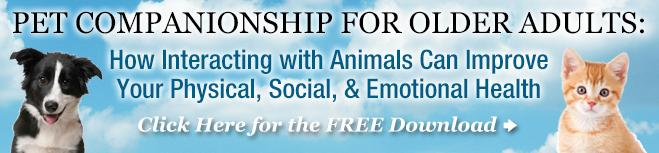 Pet Companionship With Older Adults Guide