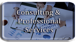 Consulting & Professional Services