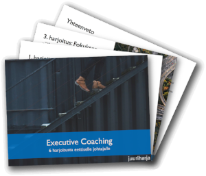 Executive Coaching -opas