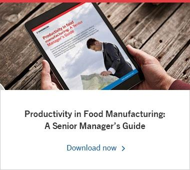 Productivity in Food Manufacturing: A Senior Manager's Guide