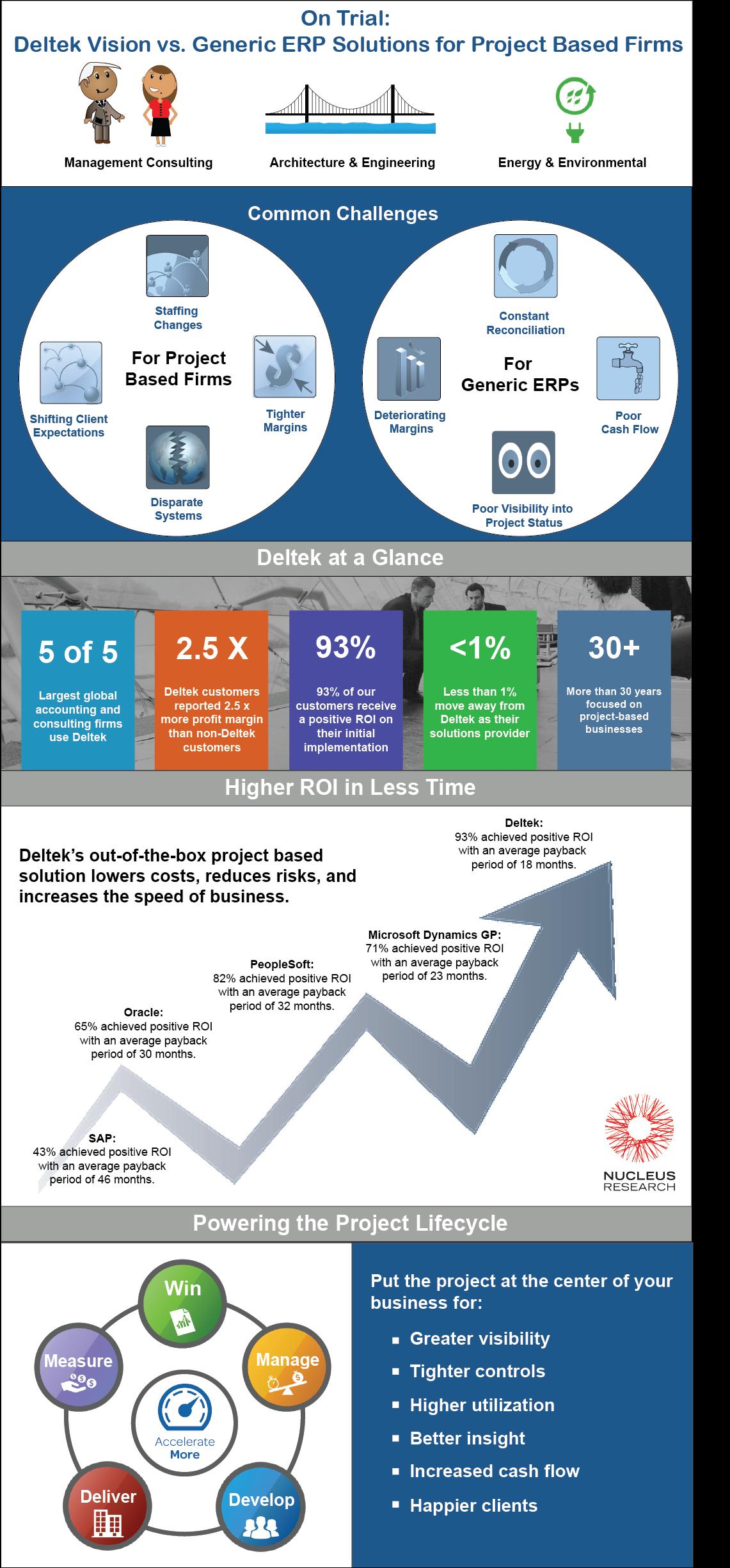 Deltek Vision, Professional Services