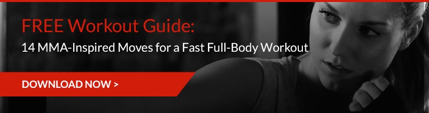 Free-MMA-Workout-Guide