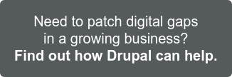 How to patch digital gaps in a growing business Find out how Drupal can improve customer experiences and streamline backend operations.