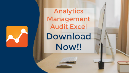 analytics management audit excel