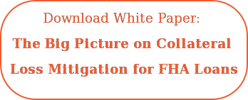 Download White Paper:  The Big Picture on Collateral  Loss Mitigation for FHA Loans