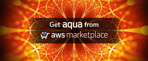 Aqua AWS Security