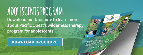 Download the Adolescents Program Guide