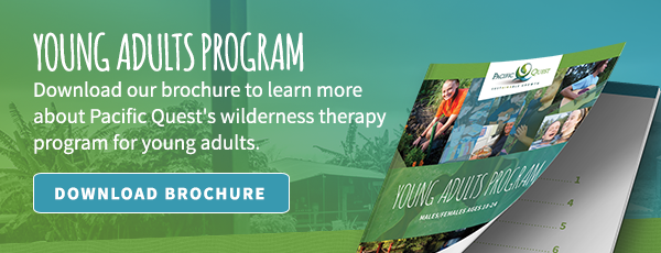 Download the Young Adults Program Brochure