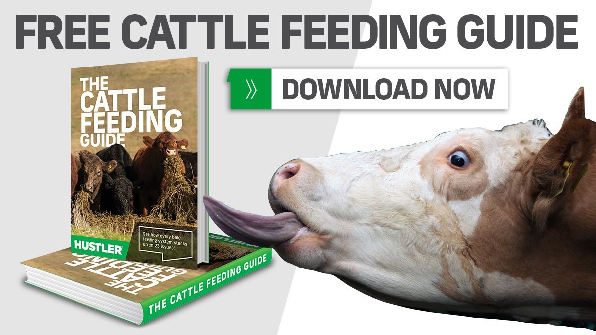 FREE CATTLE FEEDING GUIDE