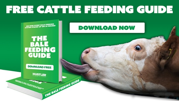Download Your Cattle Feeding Guide