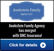 BNC - Anekstein Family Agency Merger