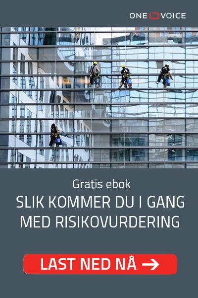 Guide til risikovurdering