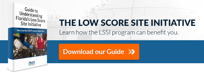 LSSI_Guide