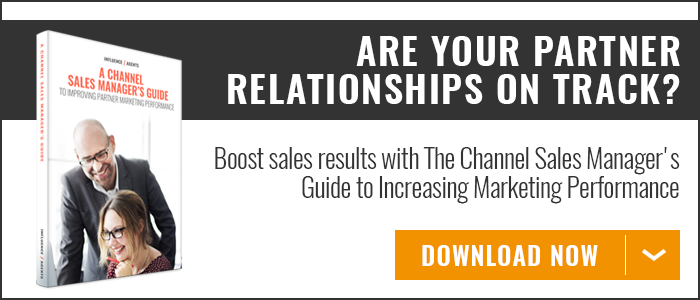 Channel Sales Manager's Guide