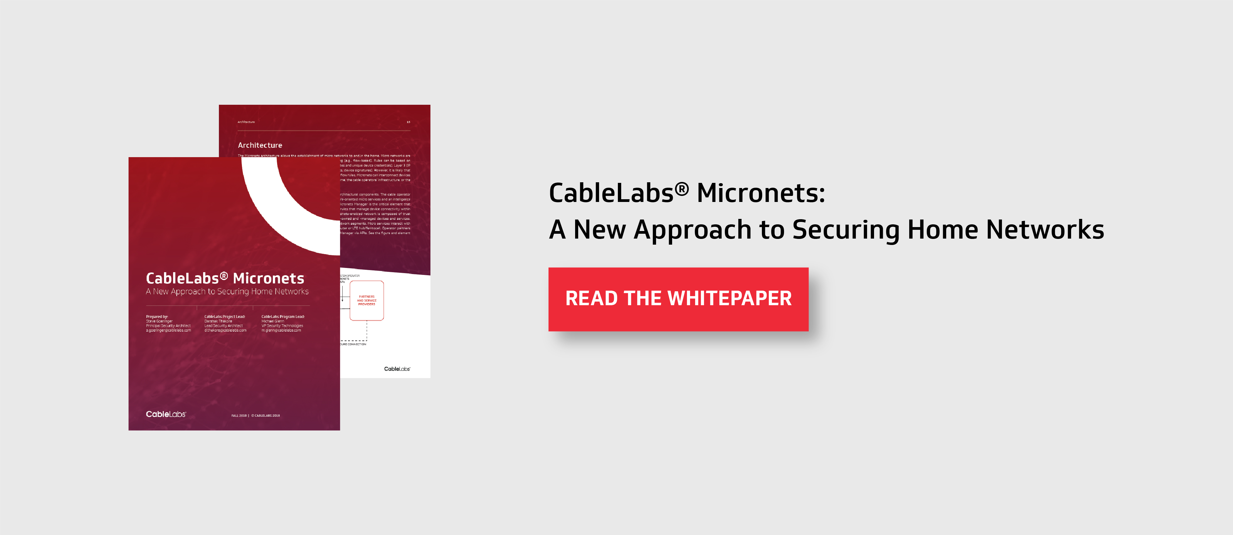 Micronets White Paper