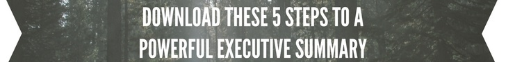 CorsPro 5 Steps to a Powerful Executive Summary
