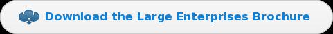 Download the Large EnterprisesBrochure