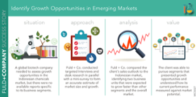 Identify Growth Opportunities in Emerging Markets