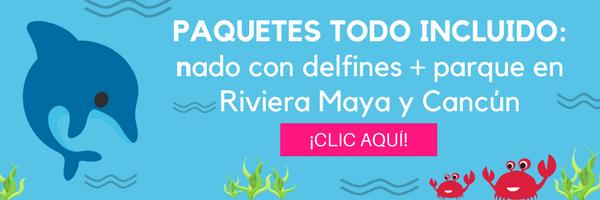 Nado con delfines + parque en Riviera Maya y Cancún