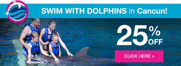 Swim with dolphins in Cancún