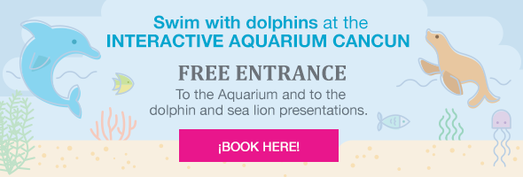 Swim with dolphins at the INTERACTIVE AQUARIUM CANCUN