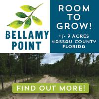 Bellamy Point Rural Land for Sale in Nassau County FL