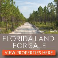 Florida Rural Land for Sale