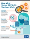 Viral Vector Vaccines