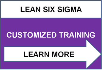 Customized Lean Six Sigma Training
