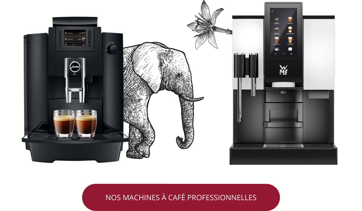 Machine à café professionnel