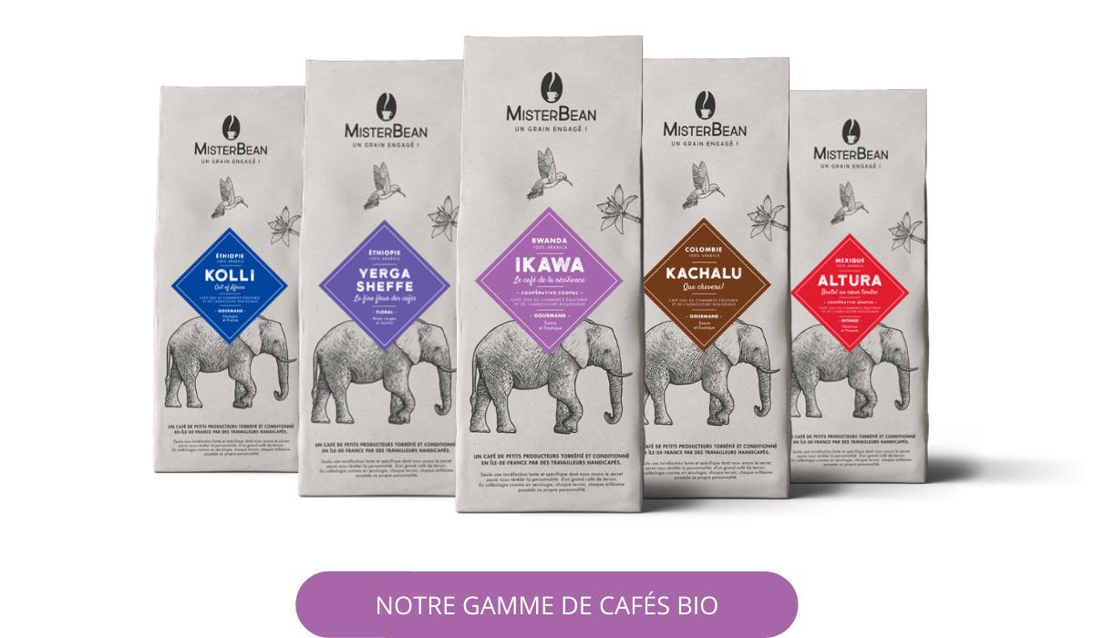 Café en grain biologique