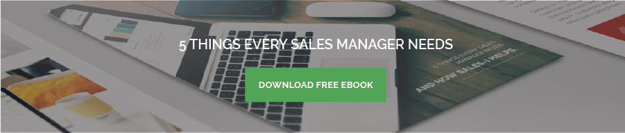 sales manager ebook